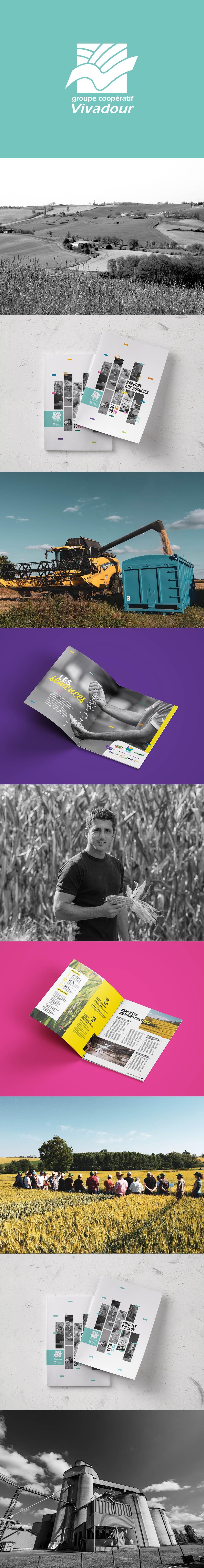 rapport d'activités groupe agricole vivadour